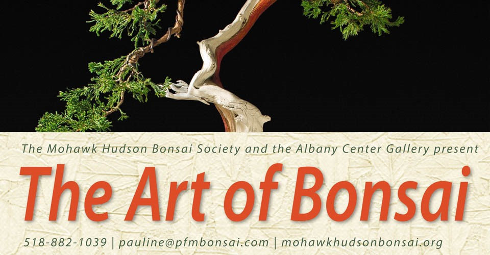 The Art of Bonsai Banner Image